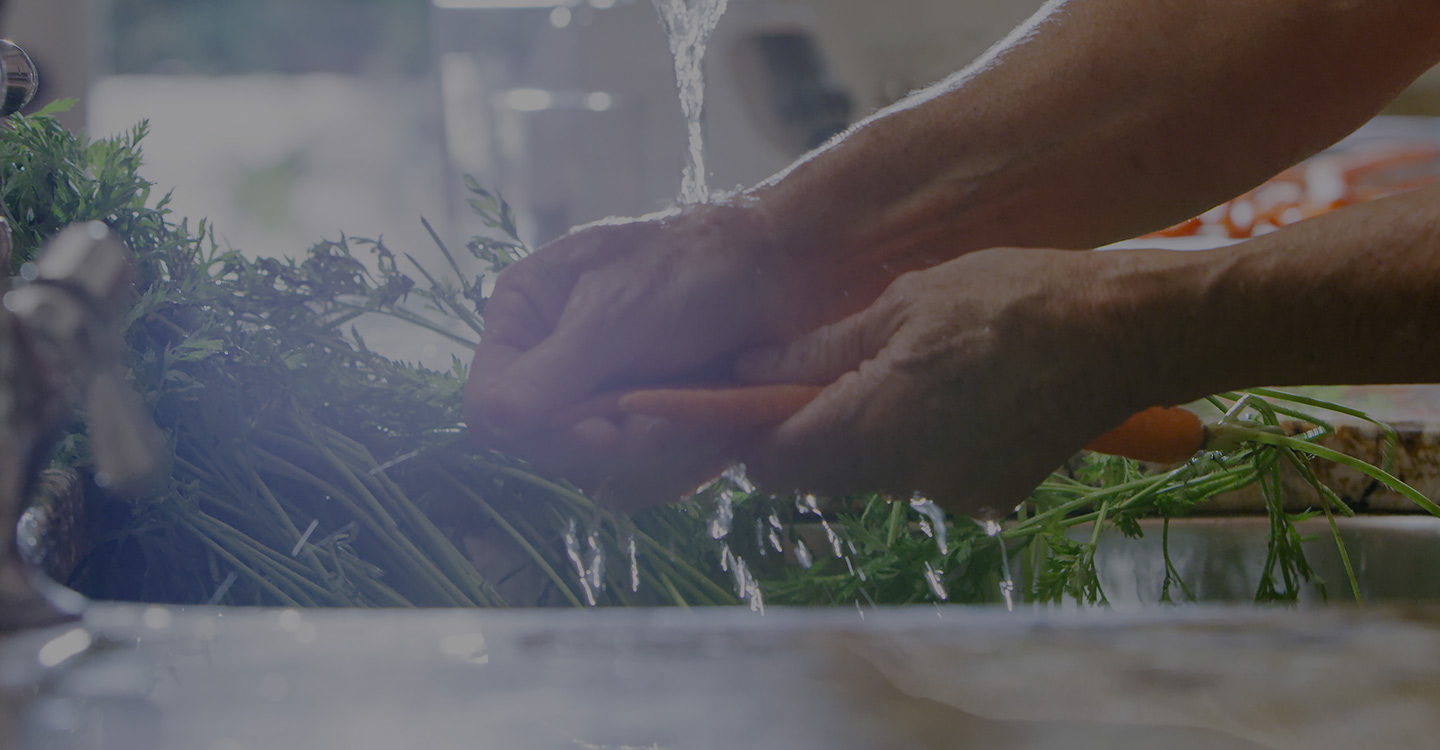 Hands washing carrots and other nutritious vegetables in a sink